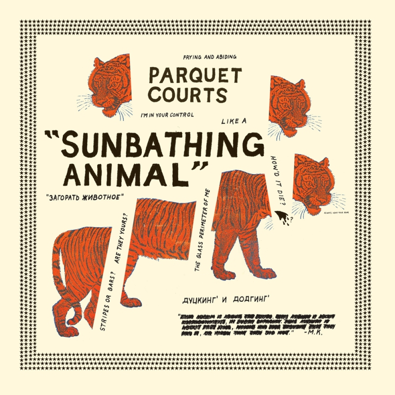 Sunbathing Animal Artwork